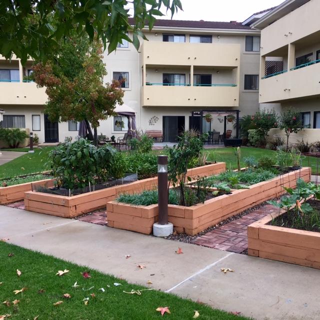 heywood garden beds