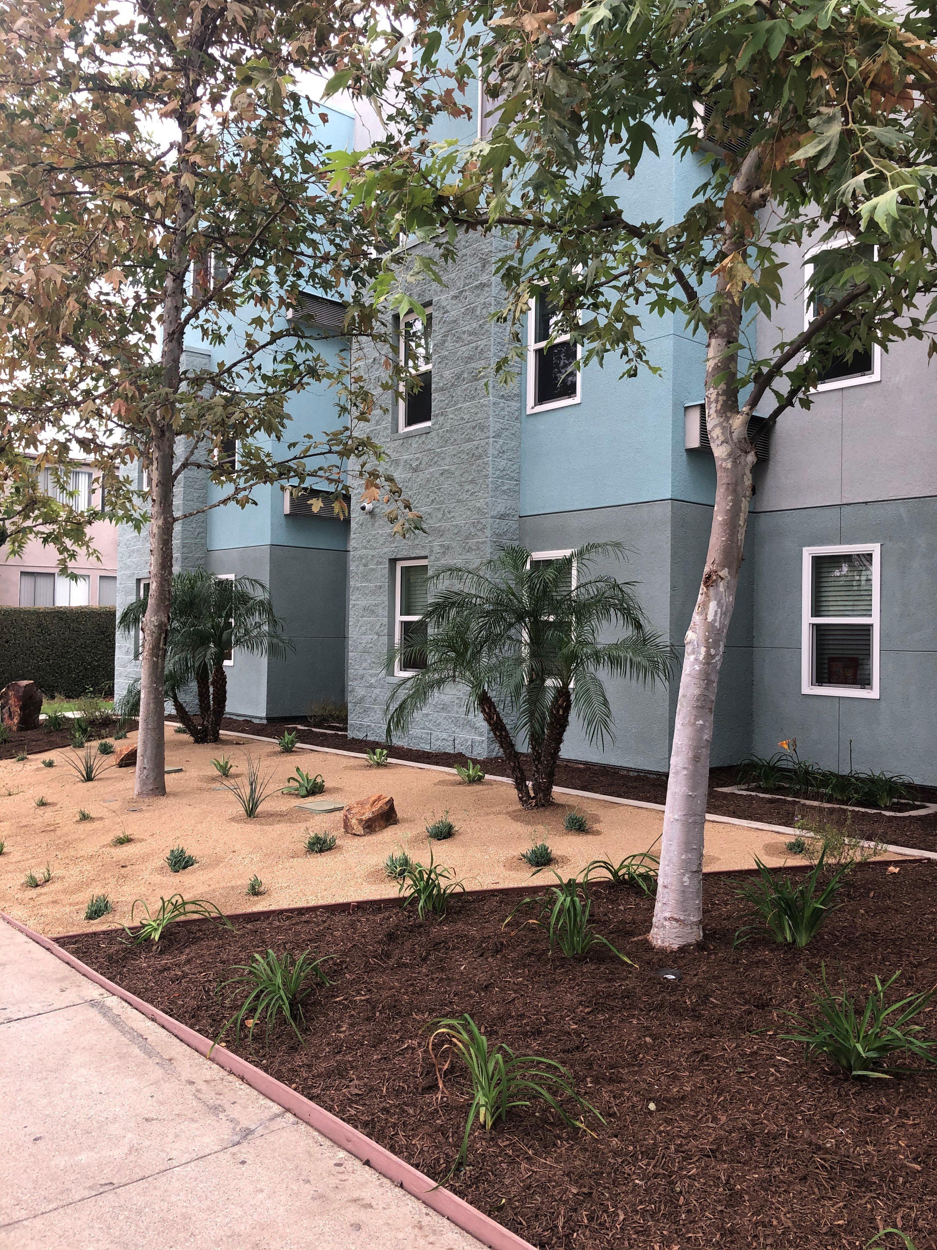 New landscape at Castlewood Terrace